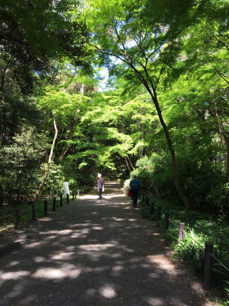 路傍植物園