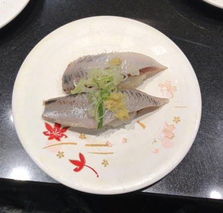 katumidori-sushi-3
