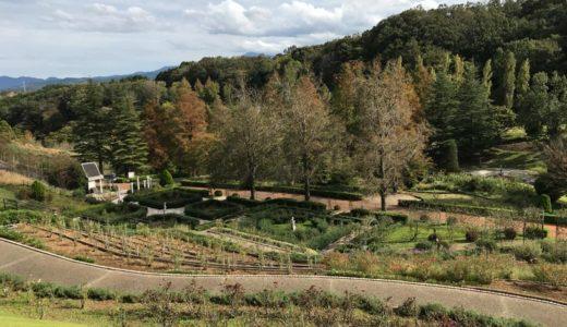【虹の郷】修善寺の緑豊かな公園で癒されてきた!
