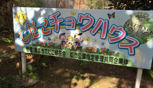 「てだこチョウハウス」子供も喜ぶ!浦添市にあるチョウを無料で観察できる飼育施設に行って来た