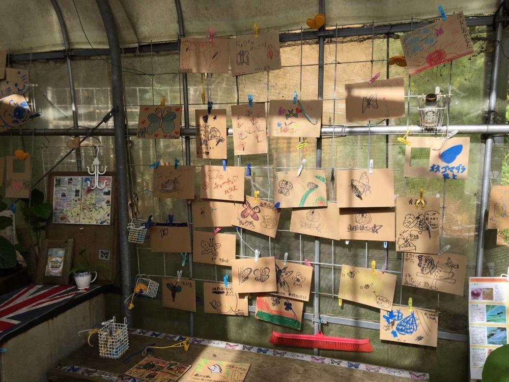 てだこチョウハウスに展示されている地域の子供たちが描いた絵