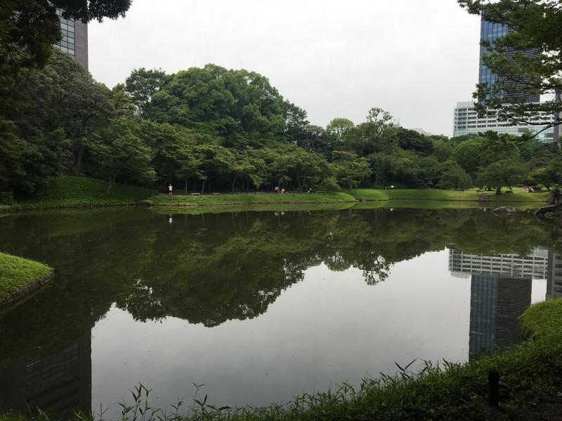 小石川後楽園の園内池の風景