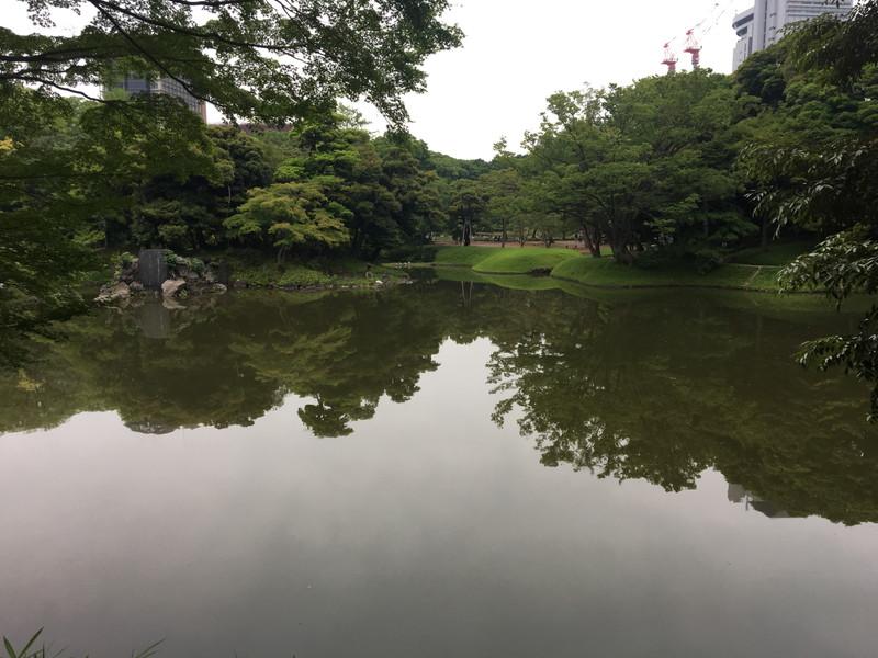 池周辺の景色